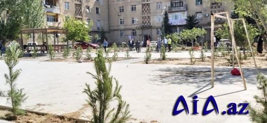 Xətai rayon İcra Hakimiyyəti tərəfindən yaşıllaşdırma və ağacəkmə tədbirləri davam etdirilir